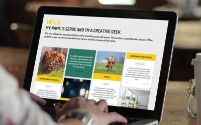 crear web blog